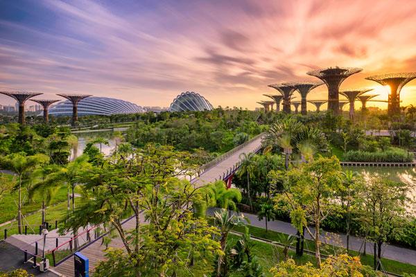 滨海东生态主题公园