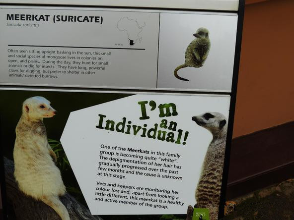 澳大利亚阿德莱主题动物园